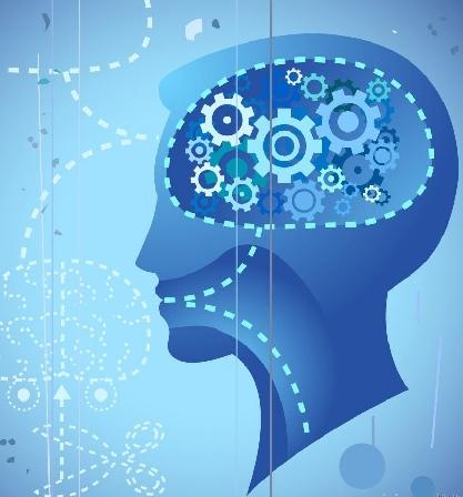 22条方法优化大脑的方法