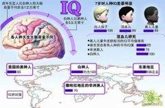 <b>爱因斯坦大脑的秘密</b>
